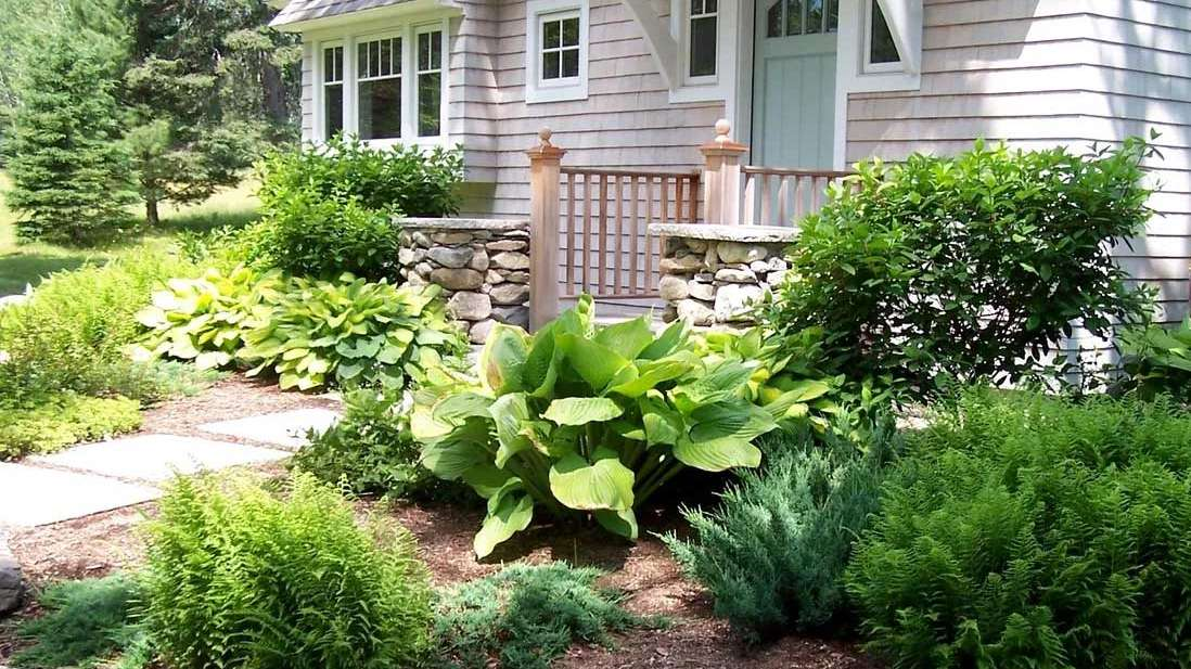Learn more about our landscape maintenance services